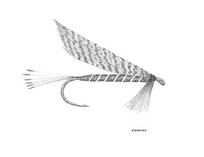 Dry Fly Art Print by Ed Einboden