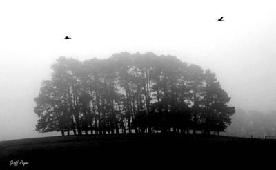 Photograph - 2 Ducks by Geoff Payne
