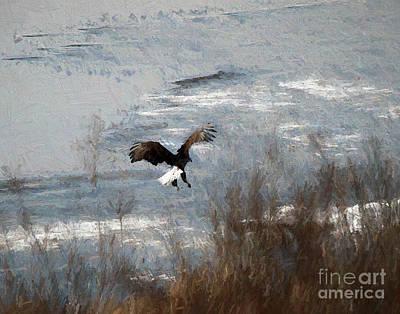 Photograph - Eagle On The Illinois River by John Freidenberg