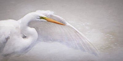 Photograph - Earth Angel by Karen Lynch