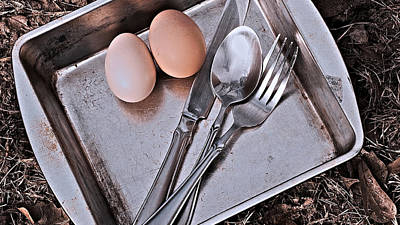 Photograph - 2 Eggs by Philip A Swiderski Jr
