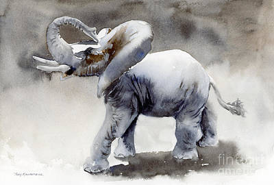 Animals Paintings - Elephant Light Study  by Amy Kirkpatrick