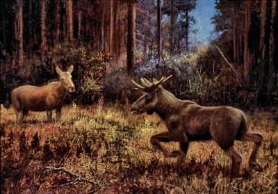 Painting - Elk by Genio GgXpress