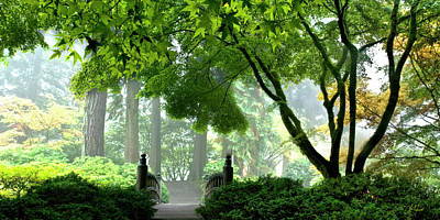 Photograph - Enchanted Forest - Panoramic - Color by Lori Grimmett
