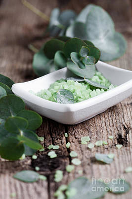 Photograph - Eucalyptus Bath Salt by Kati Finell