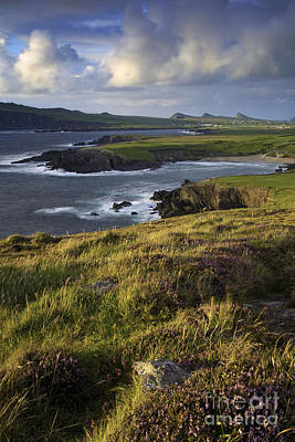 Photograph - Evening Over Dingle Peninsula  by Brian Jannsen