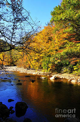 Williams River Scenic Backway Photograph - Fall Color Williams River by Thomas R Fletcher