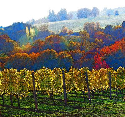 Vineyard Digital Art - Fall In A Vineyard by Margaret Hood