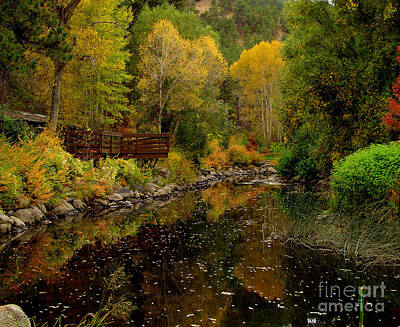 Fall In The Rocky Mountains Art Print by Marilyn Magee