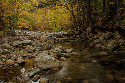 Photograph - Fall On The Gale River by Benjamin Dahl