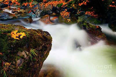 Photograph - Fall Surge by Mike Dawson