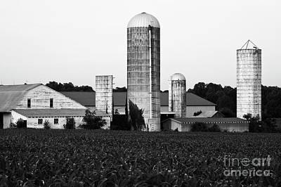 Photograph - Farm 1 by Patrick M Lynch