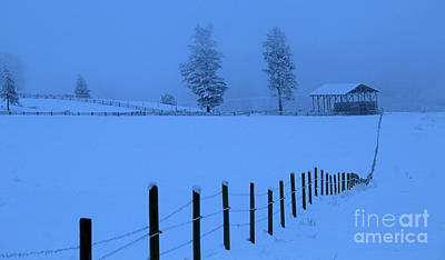 Photograph - Fence Line by Roland Stanke