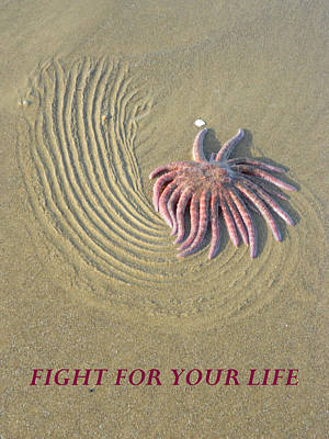 Anti-bullying Photograph - Fight For  Your Life by Gallery Of Hope