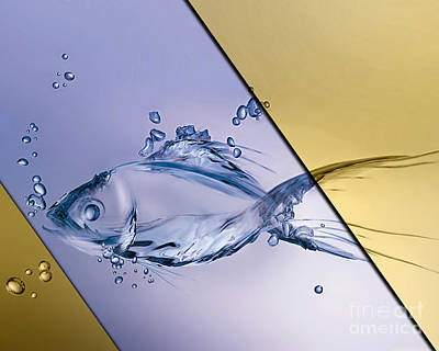 Fish Collection Art Print by Marvin Blaine