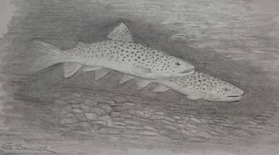 2 Fish Art Print by George Sonner