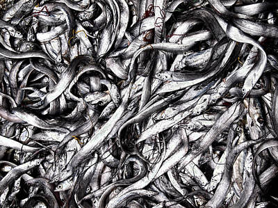 Street Photograph - Fishes by Joseph Thiery