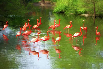 Photograph - Flamingos by John Freidenberg