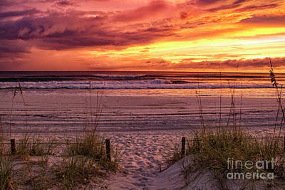 Photograph - Florida Sunset by Mechala Matthews