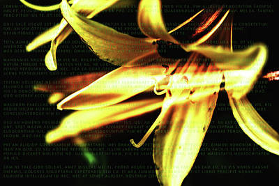 Digital Art - Flowers And Latin Text by Tommytechno Sweden