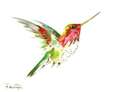 Hummingbird Drawing - Flying Hummingbird by Suren Nersisyan