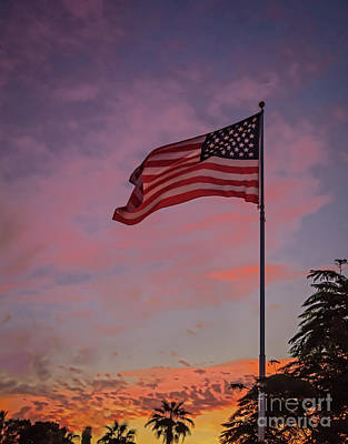 Photograph - Freedom by Robert Bales