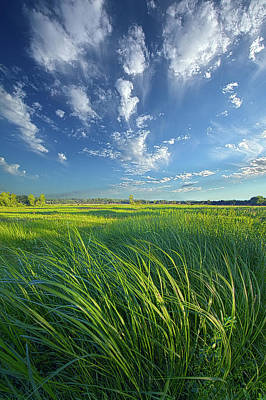 Photograph - Fresh Air by Phil Koch