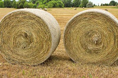 2 Freshly Baled Round Hay Bales Art Print by James BO  Insogna