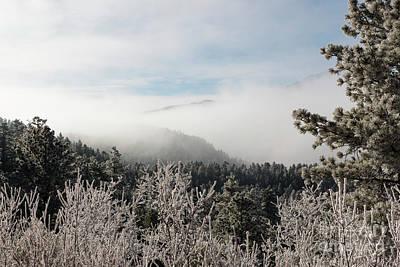 Photograph - Frosty Pikes Peak by Steve Krull