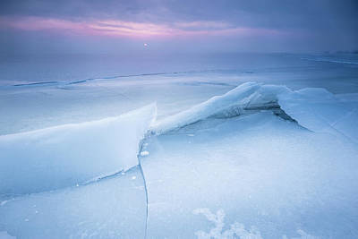 Photograph - Frozen by Davorin Mance