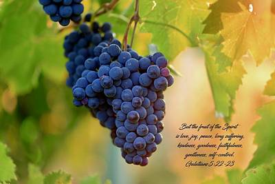 Photograph - Fruit Of The Spirit by Lynn Hopwood