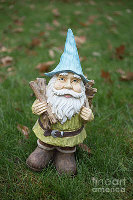 Photograph - Garden Gnome by Edward Fielding