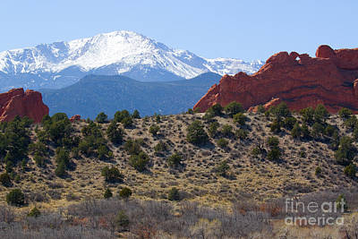 Steven Krull Royalty-Free and Rights-Managed Images - Garden of the Gods and Pikes Peak by Steven Krull
