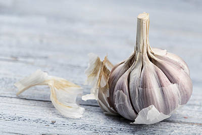 Food Photograph - Garlic by Nailia Schwarz