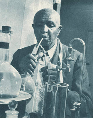 Black History Photograph - George W. Carver, African-american by Science Source