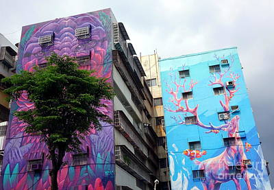 Photograph - Giant Graffiti On The Wall Of A House by Yali Shi