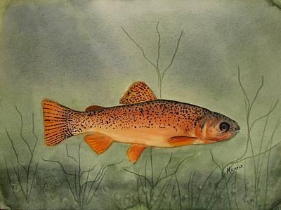 Gila Trout Art Print