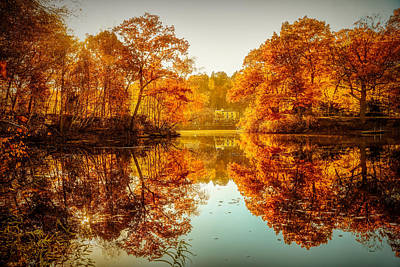 Photograph - Golden Reflections by Lilia D