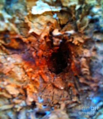 Goree Mixed Media - Goree Tree Texture  by Fania Simon
