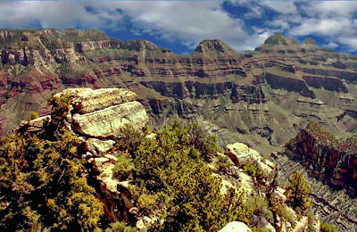 Photograph - Grand Canyon by Anthony Dezenzio