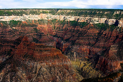 Canyons Photograph - Grand Canyon  by James BO  Insogna
