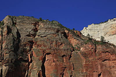 Photograph - Grand Canyon by Ronald Olivier