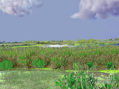Photograph - Green Cay Bird Sanctuary - South Florida by Merton Allen