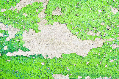 Green Paint Art Print by Tom Gowanlock