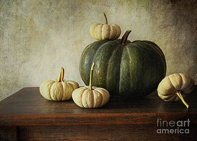 Green Pumpkin And Gourds On Table  Art Print by Sandra Cunningham