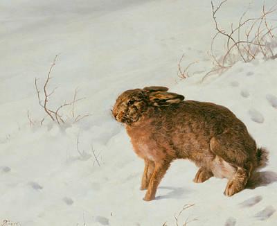 Painting - Hare In The Snow by Ferdinand von Rayski