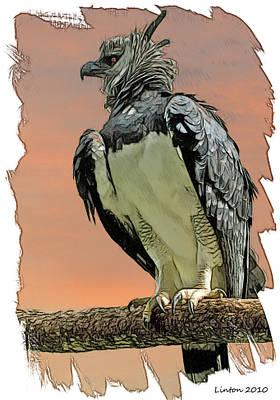 Harpy Eagle Digital Art - Harpy Eagle by Larry Linton