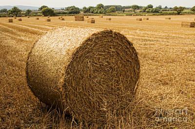 North Wales Digital Art - Hay Bales  by Chris Evans