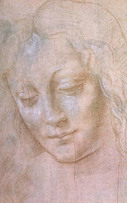 Girl Face Drawing - Head Of A Woman  by Leonardo da Vinci