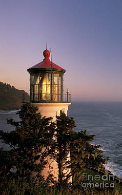 Photograph - Heceta Head Lighthouse by Greg Vaughn - Printscapes